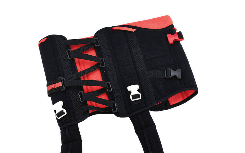 Innovative Harness with Straps